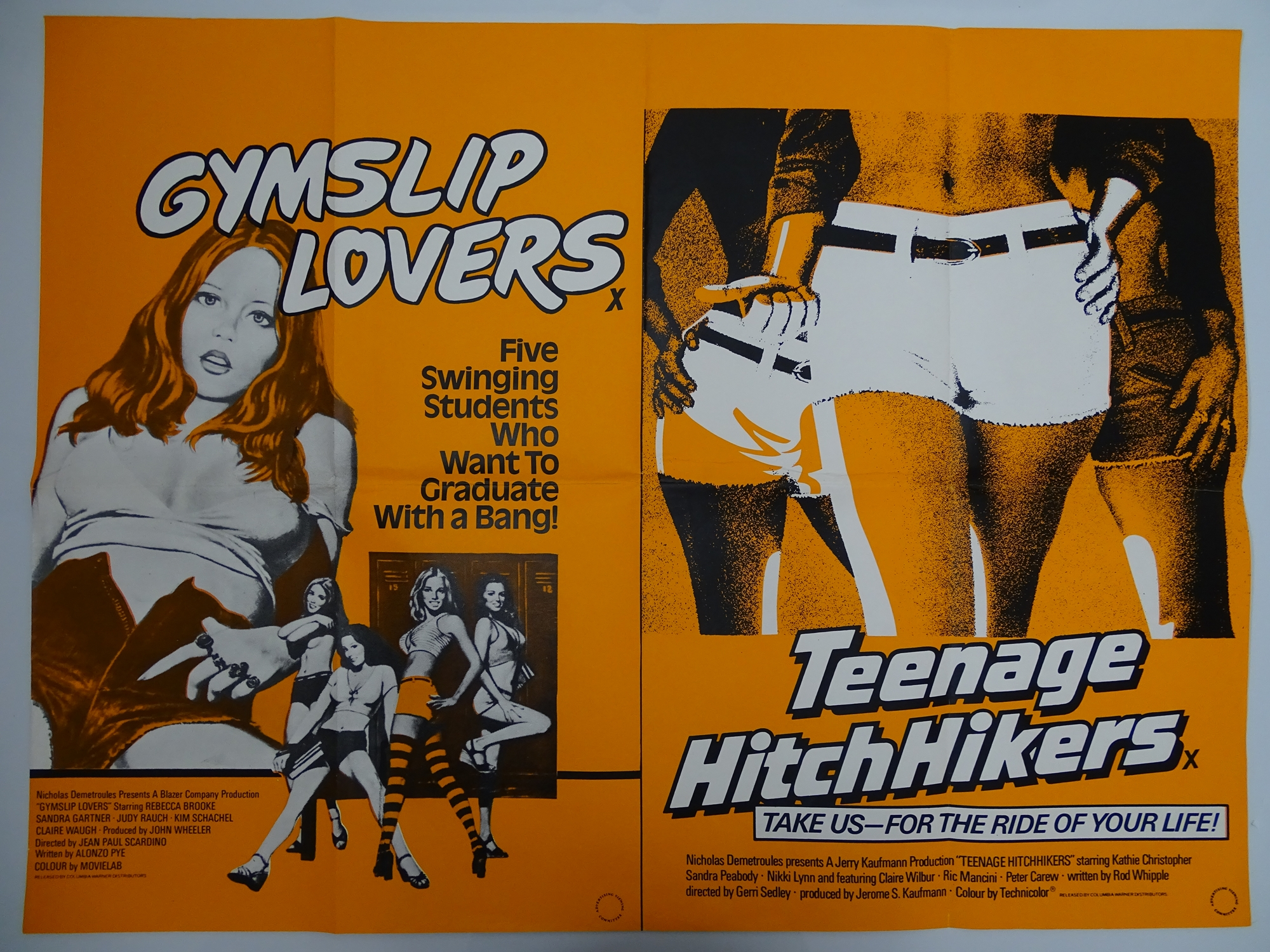 Selection of UK Quad Film Posters: NAUGHTY KNICKERS; FEMALE SEXUALITY; CONFESSIONS OF A MALE ESCORT; - Image 8 of 10