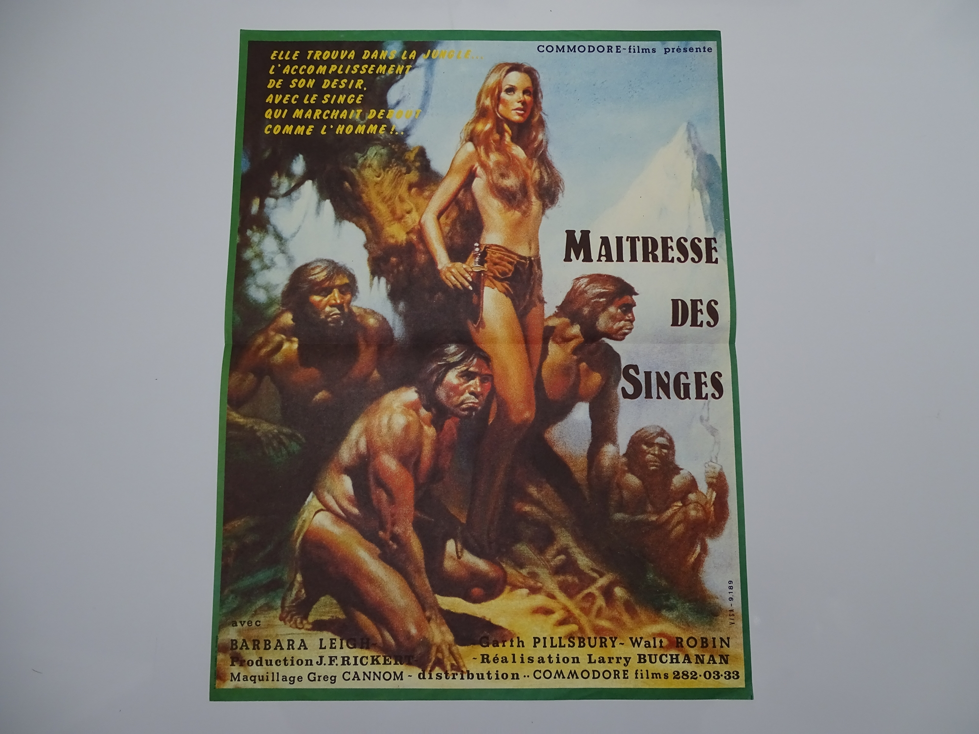 MAITRESSE DES SINGES (MISTRESS OF THE APES) (1980) - French Petite Film Poster