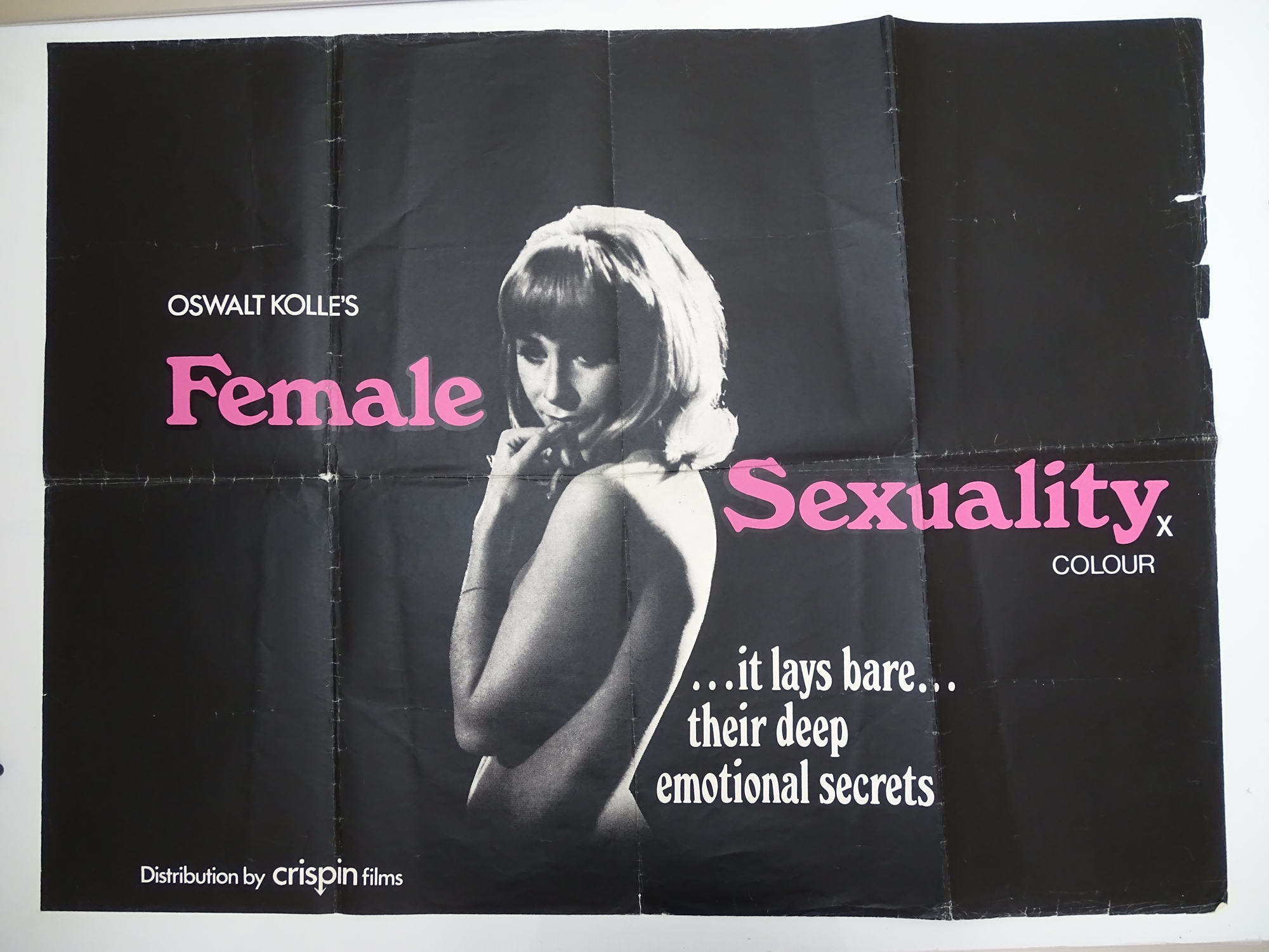 Selection of UK Quad Film Posters: NAUGHTY KNICKERS; FEMALE SEXUALITY; CONFESSIONS OF A MALE ESCORT; - Image 2 of 10