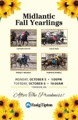 Midlantic Fall Yearlings