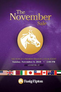 The November Sale