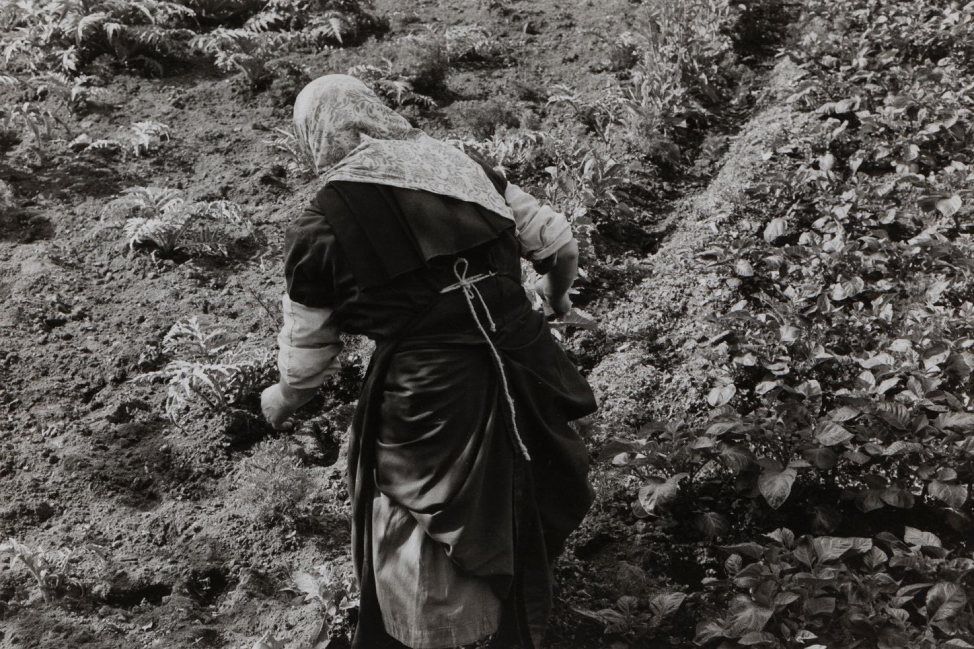Edouard Boubat (1923-1999) - Untitled (Countrywoman), years 1950 - Two gelatin [...] - Image 2 of 3