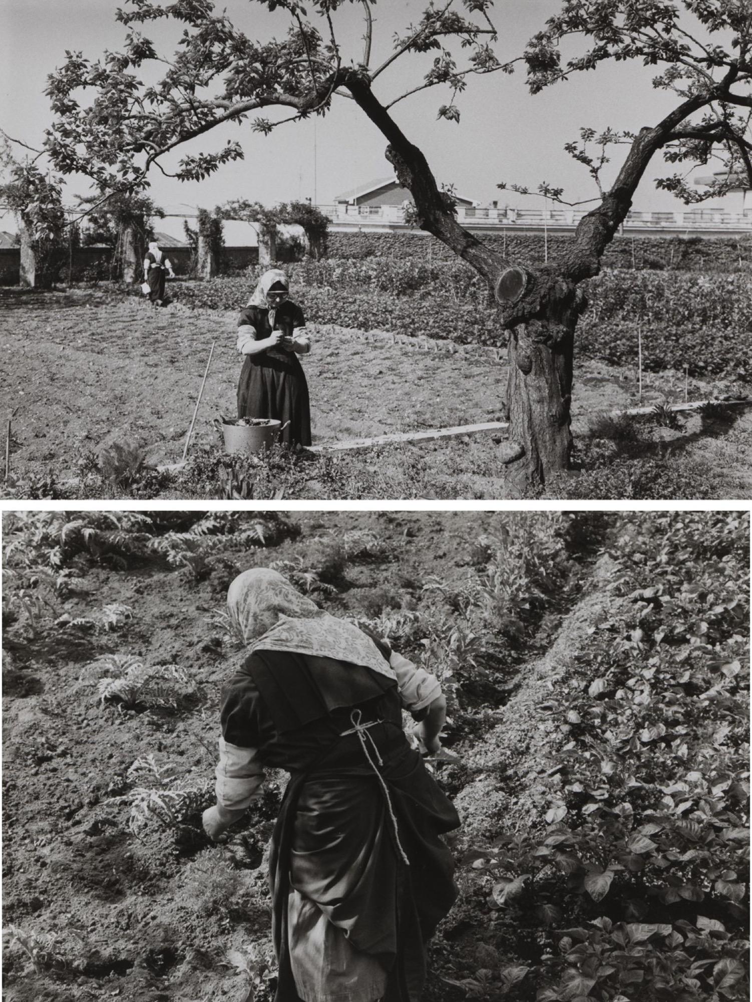 Edouard Boubat (1923-1999) - Untitled (Countrywoman), years 1950 - Two gelatin [...]
