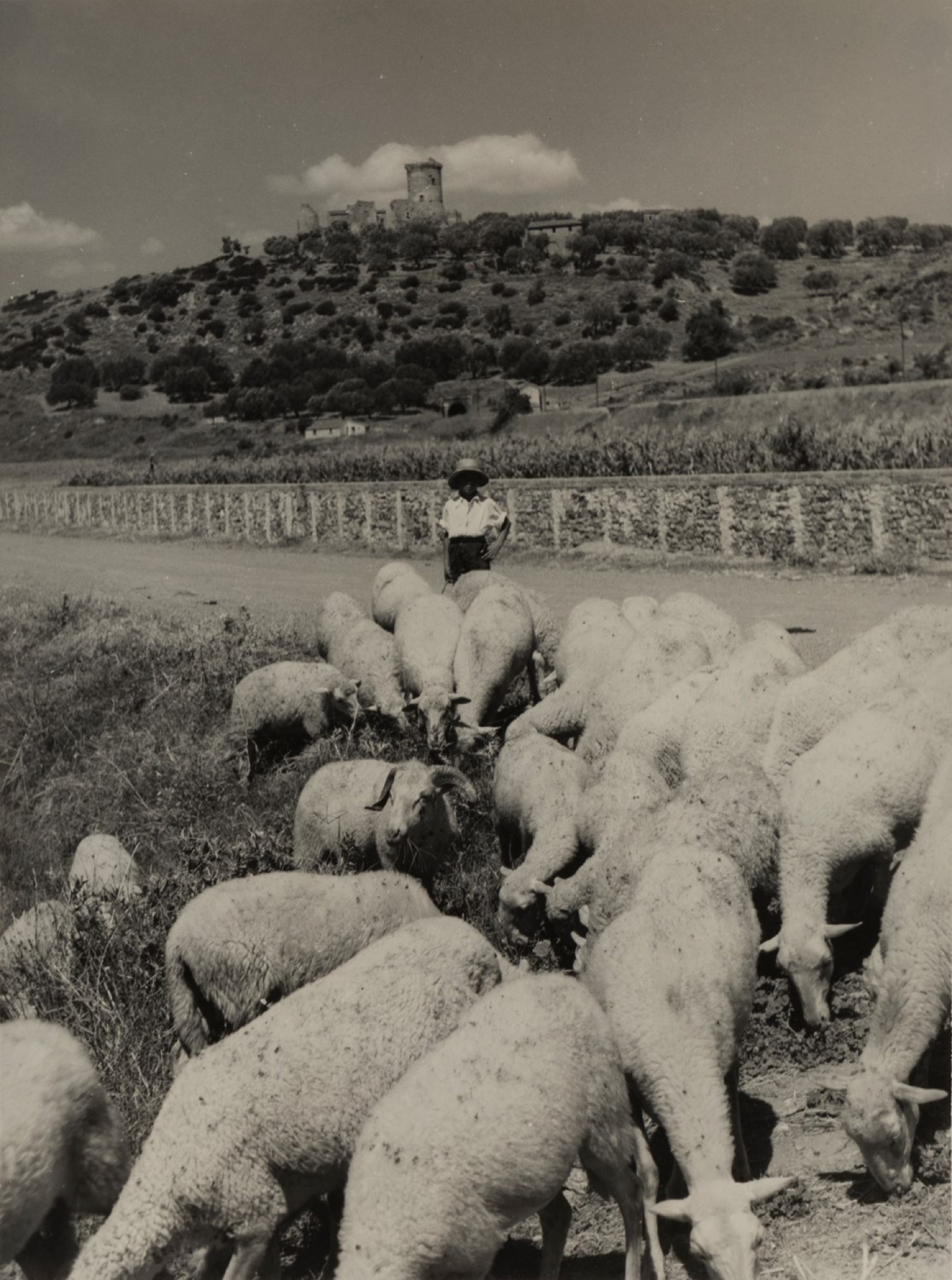 Giulio Parisio - Landscapes, years 1930/1940 - Eight vintage gelatin silver prints [...] - Image 6 of 9