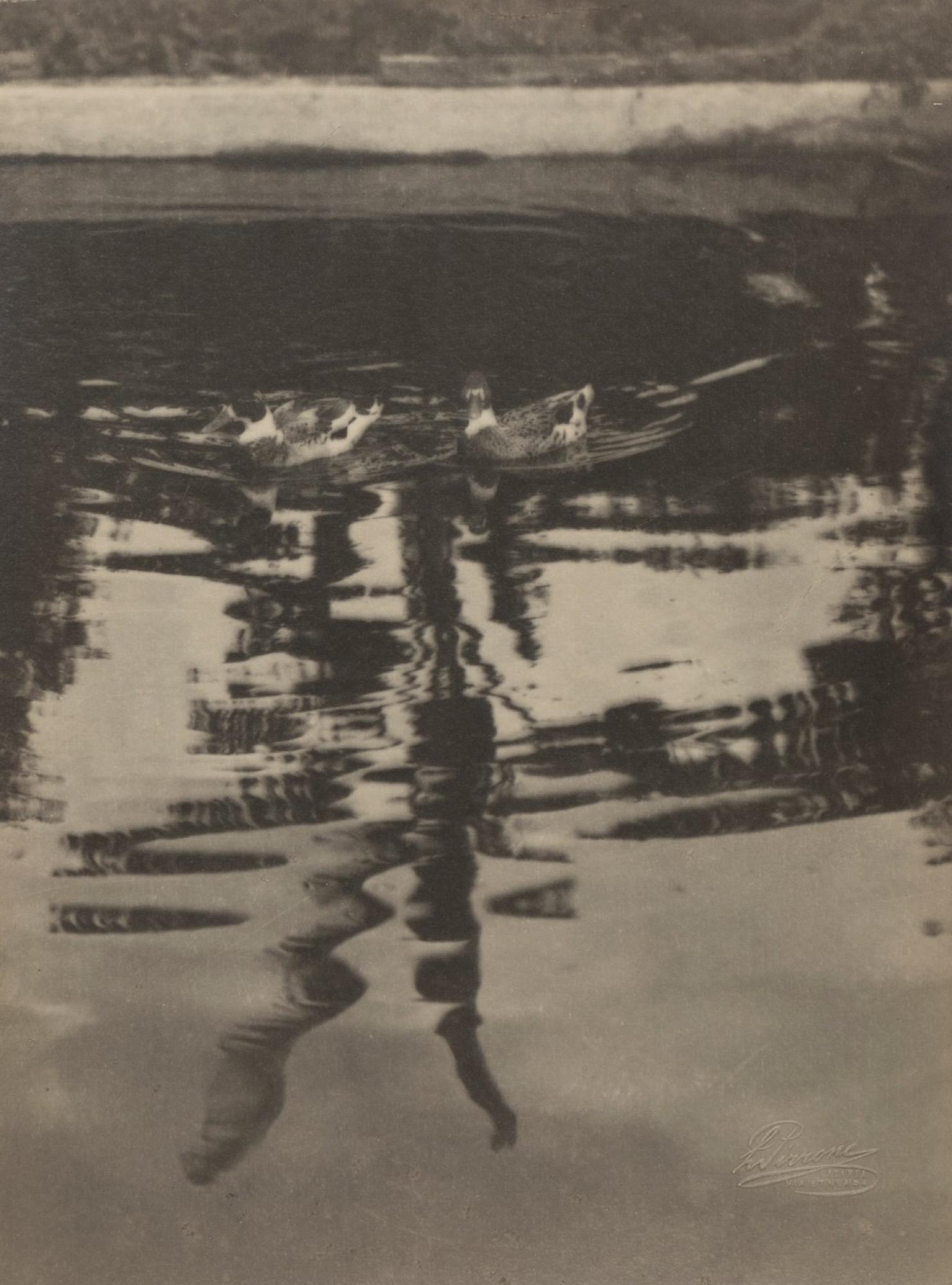 Luigi Pirrone (1898-1979) - Specchio d'acqua, years 1930 - Vintage gelatin silver [...]