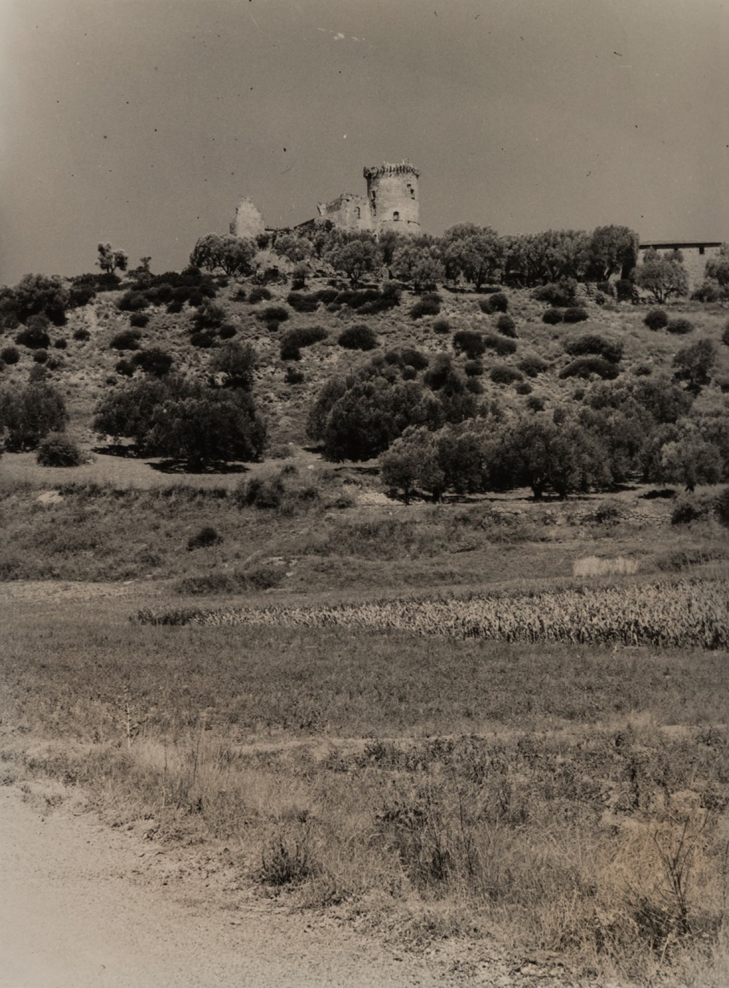 Giulio Parisio - Landscapes, years 1930/1940 - Eight vintage gelatin silver prints [...] - Image 2 of 9
