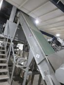 TONG & PEAL ELEVATED FLIGHTED CONVEYOR.