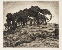 Africa.- Dugmore (A. Radclyffe) Etchings of East African Animals, 32 proof and limited edition …