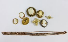 Gilt metal long chain, four cameo brooches, late Victorian seed pearl brooch and another of