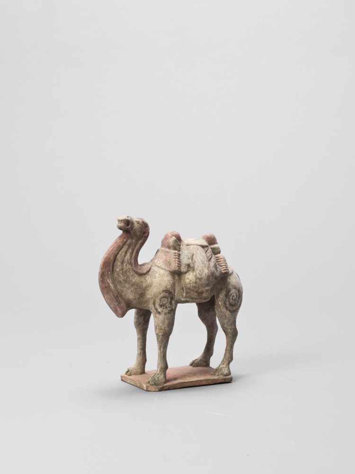 Los 390 - A TERRACOTTA MODEL OF A CAMEL, TANG