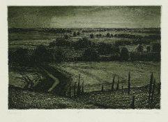 Butzmann, Manfred Oderbruch Radierung, Aquatinta in Schwarzgrün, 1982, 193 x 284, sign., bez. (