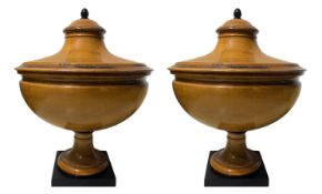 Pair of Biedermeier potiche in pale wood with details, apple and ebonized base. With cover 62X50