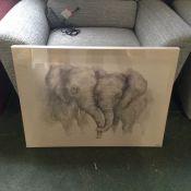 Elephant picture (MX5/2)