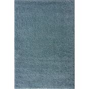 17 Stories,Chanice Shaggy Duck Egg Blue Rug RRP -£47.99 (120x170 CM ) (19402/4 -CCOO6800)