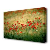 East Urban Home, Poppies In The Field Flowers Canvas Print Wall Art - RRP £96.99 (BGSX6349 - 20819/