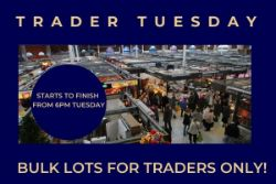 Trader Tuesday - Bulk Lots For Traders Only