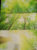 Three-Piece Beautiful Tree Canvas