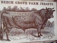 Beech Grove Cow Canvas