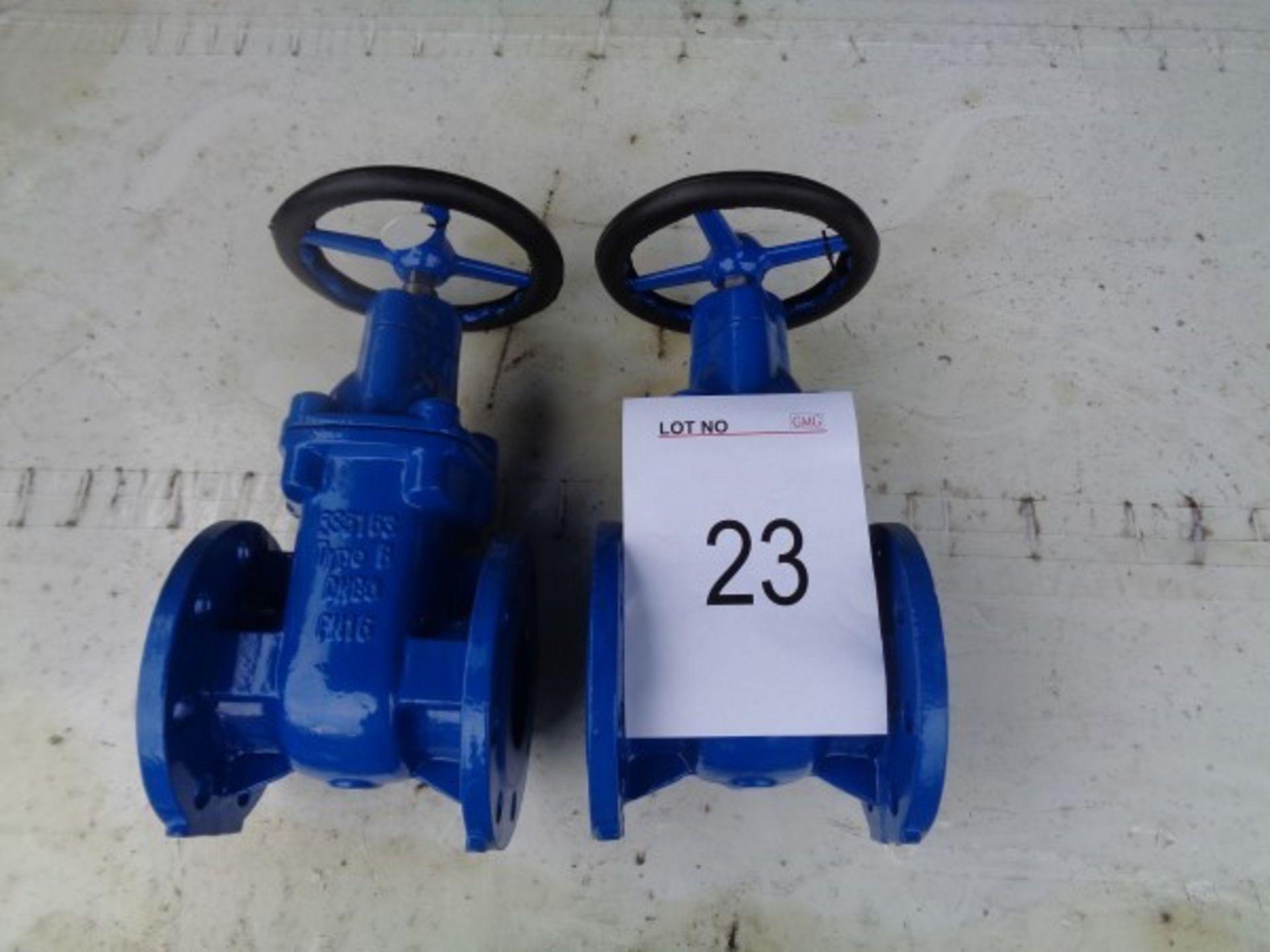 2 x BS5163 type B DN80 PN16 gate valves