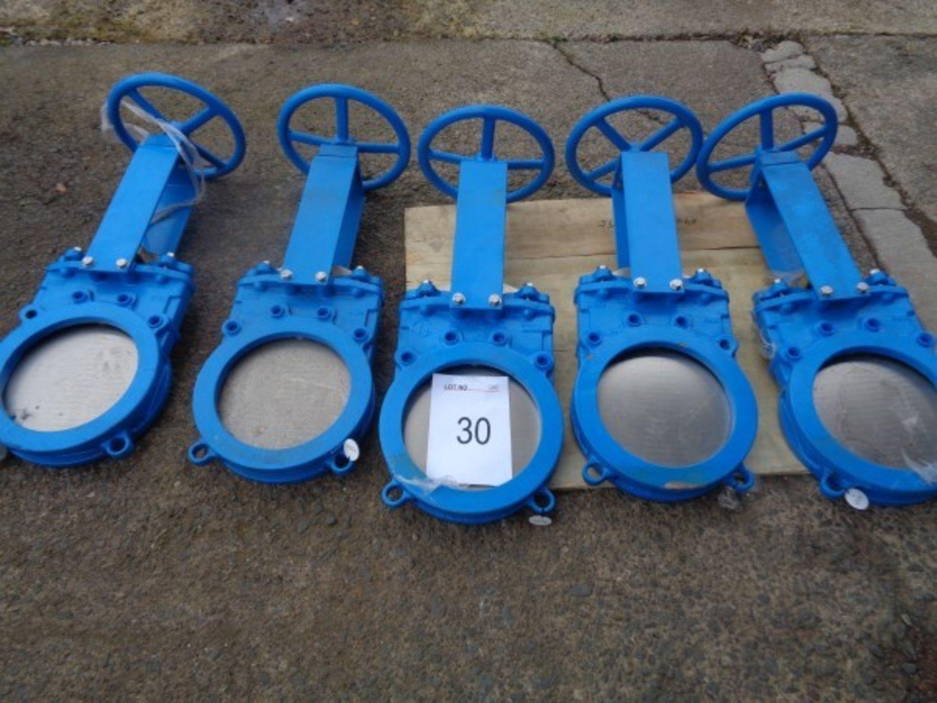 """5 x CK Model GGG40 OA2508 10"""" in - line gate valves"""