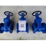 3 x BS5163 type B DN100 PN16 gate valves