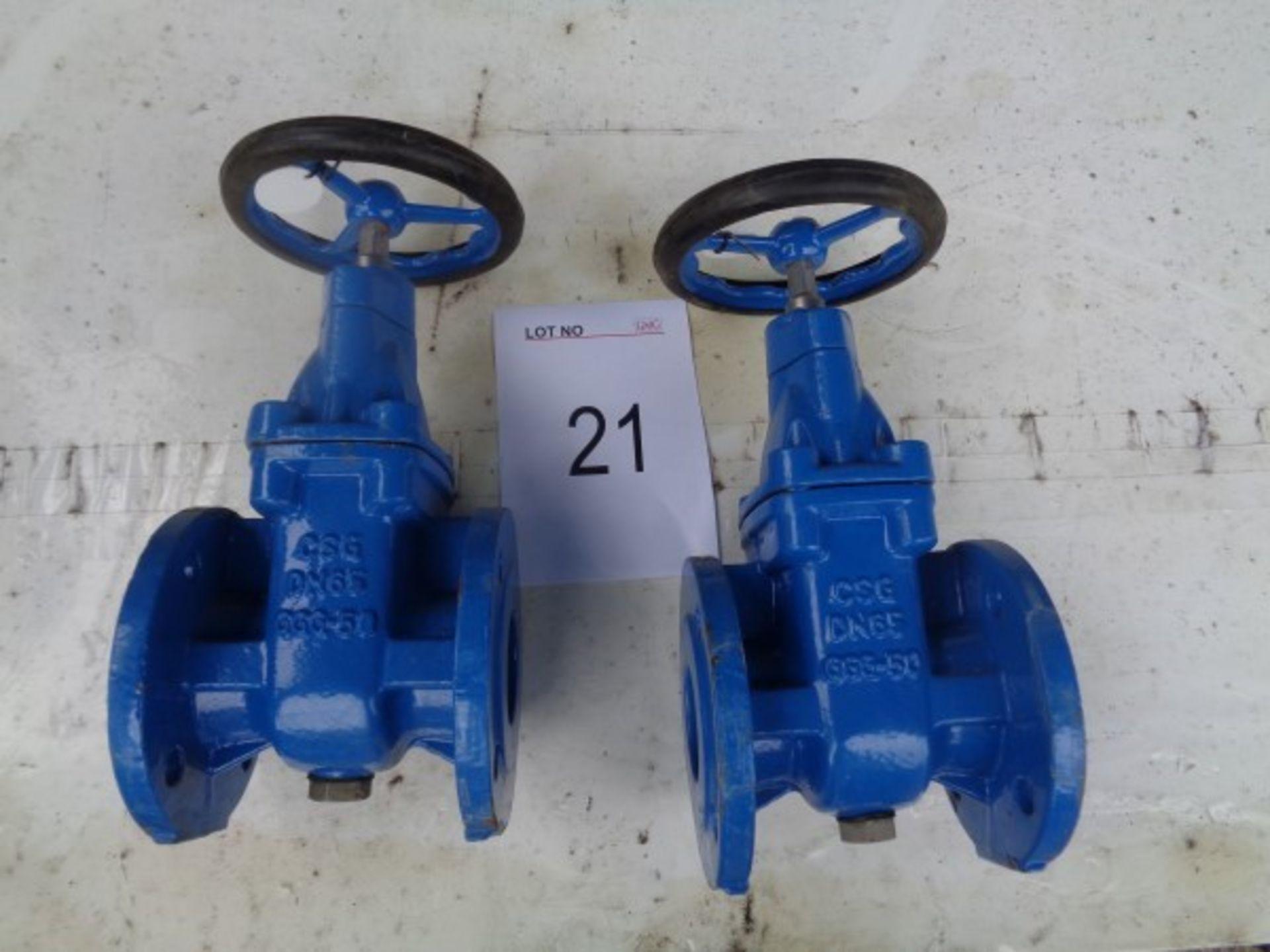 2 x CSG DN65 GGG 50 gate valves