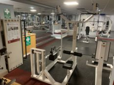 Paramount Lat Pull Down Machine Model DRP400