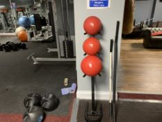3 x Medicine Balls and Stand