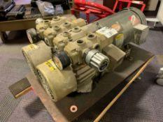 Dual Orion Dry Pump