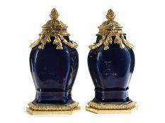 Paar Louis XVI-Deckelvasen Höhe: 21 cm. China und Paris, 18. Jahrhundert. Sechskantig balustierte