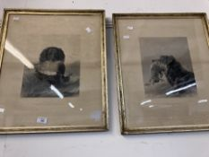 19th cent. Engravings of dogs by Richard Ansdell / H.F. Ryall (3). 13ins. x 17ins.