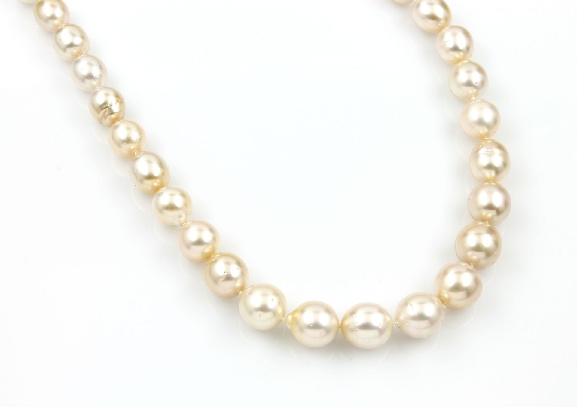 Los 31501 - Necklace with cultured south seas pearls and brilliants , creamcoloured cultured south seas