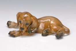 figurine, Rosenthal classic rose, designed by Kuspert, dachshund puppy, naturalistic painting in