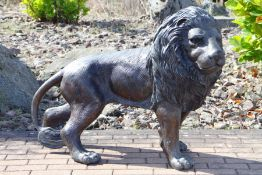 Lion, bronze, dark brown and golden brown patinated, in attentively tensed posture, detailed vivid