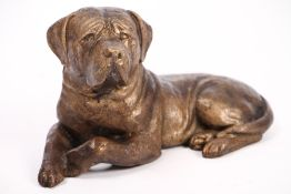 Rottweiler, bronze, patinated in golden brown,relaxed presentation, carefully observing, slight