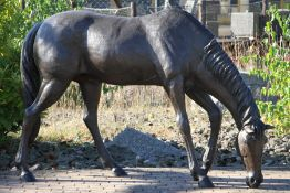 Grazing Stallion, bronze, brown, dark brown and blackish patinated, relaxed presentation, vivid