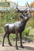 Deer, bronze, brown and dark brown patinated, so-called Twelve-sided, naturalistic- idealistic