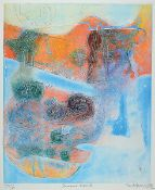 Shoichi Hasegawa, born 1929, color etching, signed, num. 5/25, plate approx. 59x49 cm, total approx.