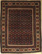 Shirwan antik, Kaukasus, um 1900, Wolle aufWolle, ca. 158 x 122 cm, EHZ: 4
