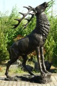 Röhrender Hirsch auf Felsgrund, Bronze, braun u. dunkelbraun patiniert, sogenannter Zwölfender,