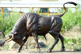 Stier in Angriffsstellung, Bronze, braun patiniert, Hörner u. Hufe teils goldbraun abgesetzt,