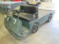 Electric Cart