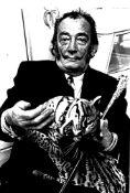 SALVADOR DALI. 1904-1989. Photograph with his pet ocelot, named «Babou». - Gelatin [...]