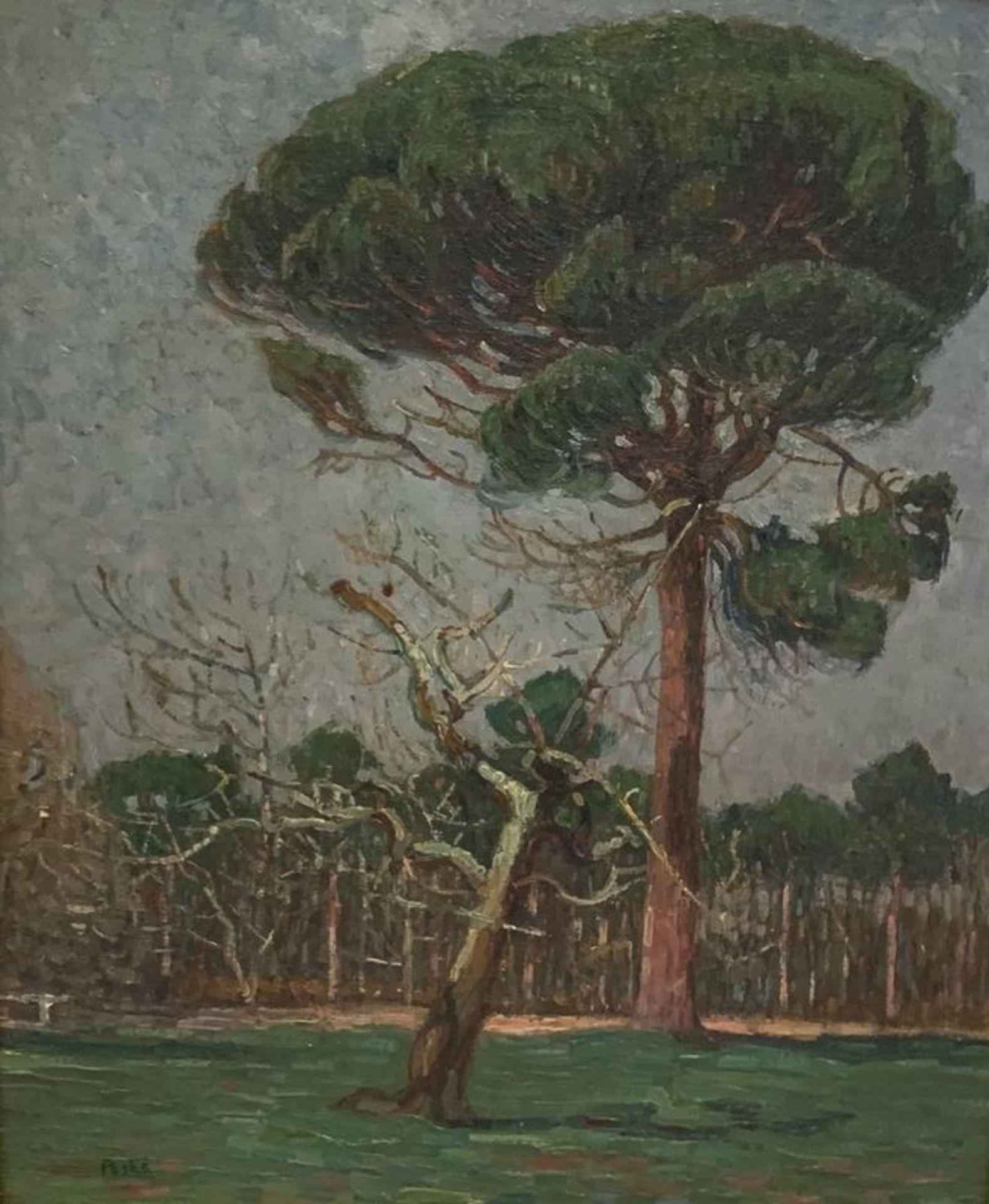 Los 546 - Jean PESKE (1870-1949) Forest in Provence - Signed (lower left) 46 x 38.5 [...]