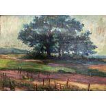 Jean PESKE (1870-1949) Landscape with a grape vine - Signed (lower left) Oil [...]