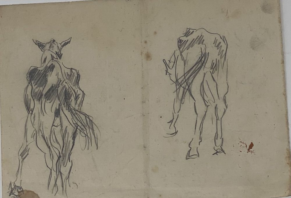 LEONID ROMANOVITCH SOLOGUB (1884-1956), The head of the horse, Foal, Horse sketch, [...] - Image 4 of 8