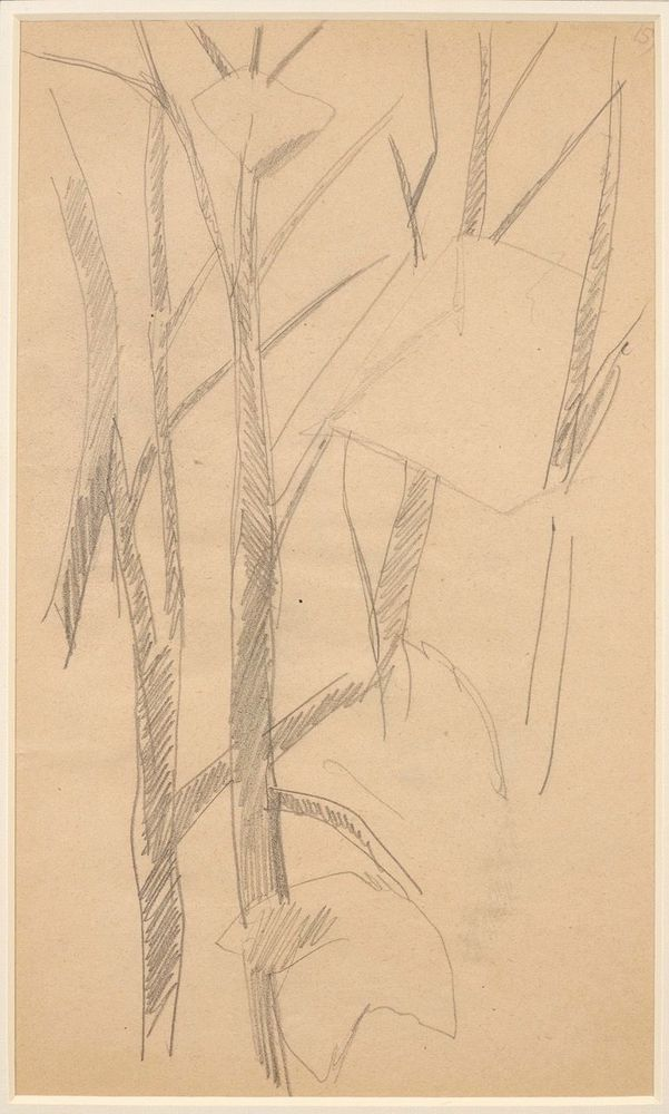 LYUBOV POPOVA (1889-1924), Two Studies of Trees annotated with numbers '161' and [...] - Image 2 of 3