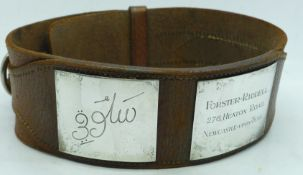 A leather greyhound collar with owner's name and dog's name