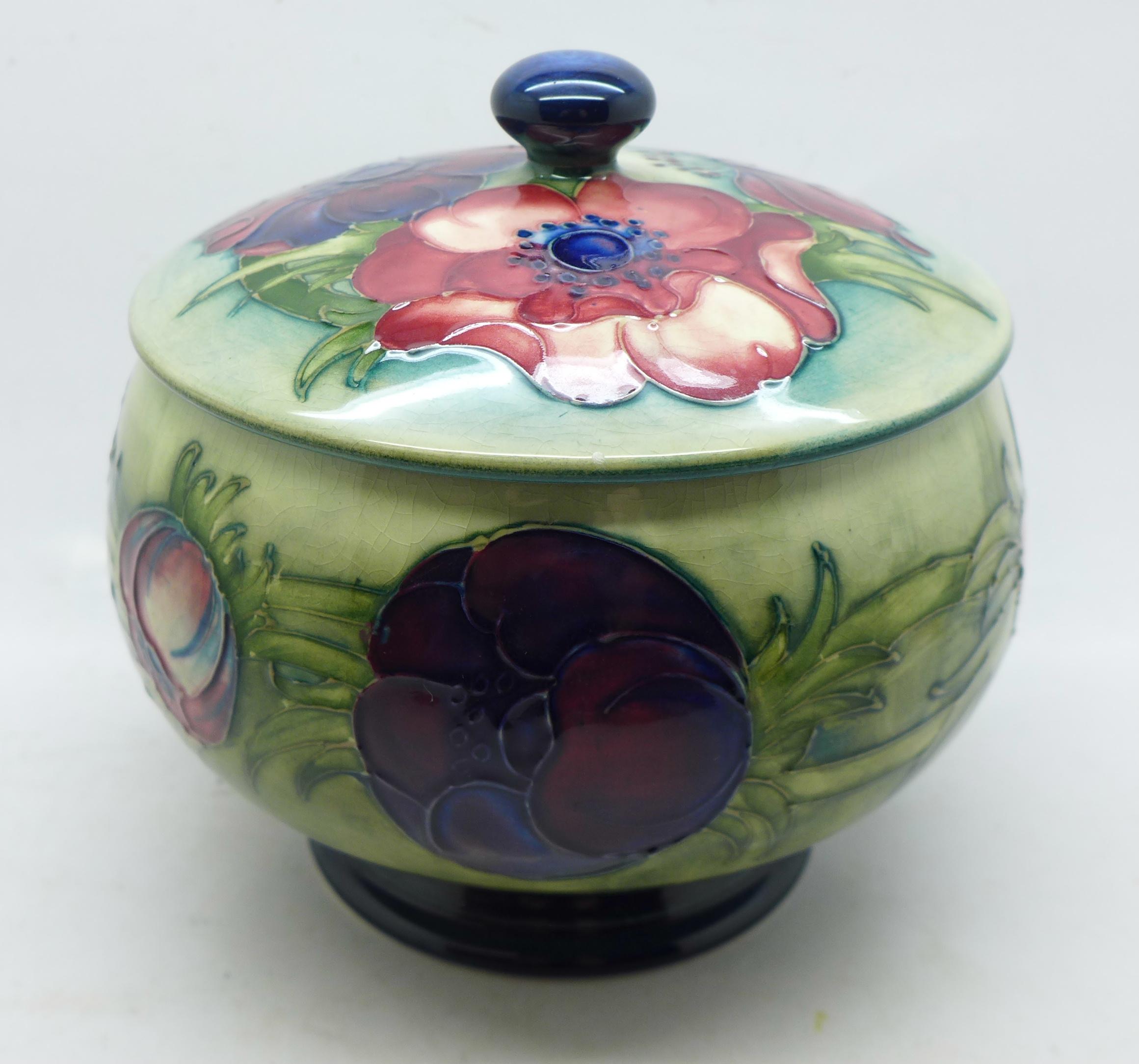 A Moorcroft anemone lidded pot, 12.5cm diameter