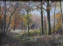 Peter Barker (b.1954), Autumn, Southwick Wood and Sunlight, Wakerley Wood, 9cms x 12cms, oil on